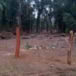 Chácara Cavagnolli Sitio do Campo (Cód 012)